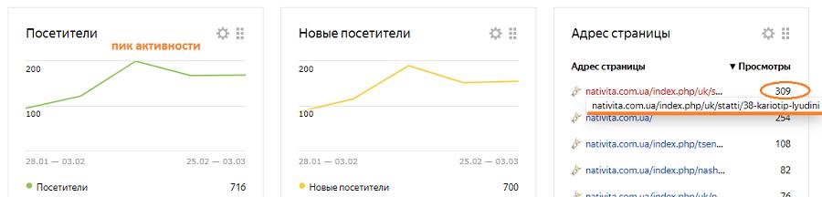 пик активности пользователей на сайте